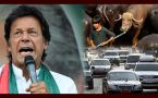 Imran Khan ने इसलिए Pakistan PM House की Luxury Cars, Buffaloes किए Auction