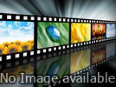 ढाई किलो का हाथ दिखाएगा तो दुश्मन के हौसले पस्त हो जाएंगे: सुषमा स्वराज