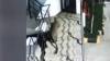 ठाणे के मॉल में घूमता दिखा तेंदुआ हुआ CCTV में कैद, देखें तस्वीरें