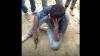 दुल्हन की विदाई से पहले तमंचा लेकर पहुंचा 'प्रेमी', कही ऐसी बात की लोगों ने कर दी पिटाई