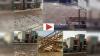 जयपुर में टिड्डी दल का हमला, VIDEO में देखें किस तरह टिड्डियों से भर गए घर