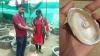VIDEO : राजस्थान में मोती की खेती, थोड़ी सी जगह में सालाना 9 लाख रुपए कमा रहे नरेंद्र गरवा