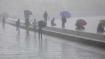 अगले 24 घंटों में इन राज्यों में भारी बारिश की आशंका, IMD ने जारी किया अलर्ट