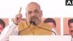 MaharashtraAssemblyPolls: 370 को लेकर जो कसक थी उसे हमने उखाड़ फेंका:  अमित शाह