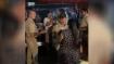 गाजियाबाद: बाजार में मेंहदी लगवाने गई महिला से दरोगा ने की बदसलूकी, वीडियो वायरल