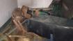 बीजेपी की संकल्प यात्रा में भड़की हिंसा, टीएमसी नेता की मौत