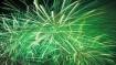 Diwali 2019:  जानिए क्या होता है ग्रीन पटाखे?