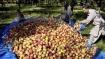 जम्मू कश्मीर: सोपोर में सेब से लदे ट्रक पर आतंकियों ने पेट्रोल बम से किया हमला