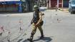 अमेरिकी कांग्रेस में जम्मू कश्मीर पर सुनवाई, सांसदों ने घाटी में हिंदू संगीत बजने पर मांगा जवाब