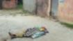 आजमगढ़ः मोबाइल के विवाद के चलते घर में घुसकर परिवार पर हमला, बाप-बेटी की मौत