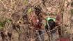 मुजफ्फरपुरः घने जंगलों में व्यक्ति के साथ आपत्तिजनक हालत में थी लड़की तभी पहुंच गए दो लड़के, वीडियो वायरल