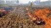 यूपी: पराली जलाने पर 208 किसानों पर जुर्माना, एसडीएम और लेखपालों सहित 54 पर कार्रवाई