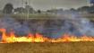 पराली जलाने के आरोप में मथुरा में 16 किसान गिरफ्तार, 2 लेखपालों को निलंबित कर दिया गया