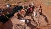 अर्जेंटीना में वैज्ञानिकों ने खोजा 5 ट्रक से भी लंबे आकार के डायनासोर का जीवाश्म, करीब 10 करोड़ साल है पुराना