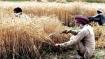 सरकार ने डायरेक्ट बेनिफिट ट्रांसफर लागू कर किसानों को दी बिचौलियों से मुक्ति, ऑनलाइन आवेदन से ले रहे अनुदान