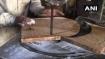 इस लकड़ी के आगे क्या हीरा, क्या मोती, सिर्फ एक किलो लकड़ी में हो जाओगे मालामाल