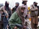 पाक से बदला लेगा तालिबान