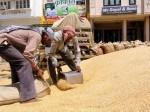 गांव-गांव में बनेंगे अनाज भंडार, अब कोई भूखा नहीं मरेगा