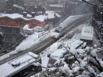 हिमाचल की बर्फीली वादियों में सब्जियों की बहार
