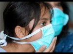 Rajasthan Maharastra Tourism Face Rs 5500 Cr Loss Due To Swine Flu