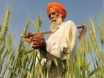क्या है कृषि विज्ञान केंद्र पोर्टल- पूर्ण विवरण