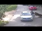 Viral Video:देखें कैसे गुस्से में कार से बाहर निकली लड़की को जिंदा खा गया बाघ