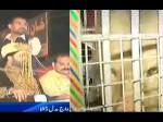 VIDEO: शेर पर बैठकर आया पाकिस्तानी दूल्हा, देखने वाले रह गए दंग