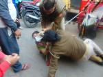 संभल: बीच सड़क पुलिस वाली से महिला की गुत्थमगुत्था, देखिए तस्वीरें