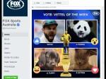 ऑस्ट्रेलियाई मीडिया ने विराट को बताया विलेन, कुत्ते-बिल्ली-पांडा से की तुलना