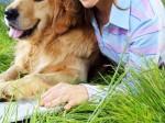कुत्ते से संबंध बनाने पर 64 साल की महिला को जेल, कोर्ट में बताया क्यों किया ऐसा