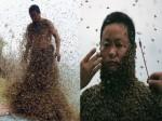 शहद बेचने के लिए शख्स ने खुद को 460000 मधुमक्खियों से कटवाया