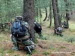 नौशेरा में पाकिस्तान की फायरिंग का मुहंतोड़ जवाब दे रही सेना, पाक के दो जवान घायल