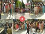 VIDEO: थाने में हुआ निर्वस्त्र प्रदर्शन, शर्म से भागते दिखे पुलिसवाले
