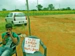 सूरजमुखी के खेत में सेल्फी का कारोबार, किसान मालामाल