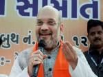 शिमला नगर निगम चुनाव: 31 साल बाद हारी कांग्रेस, बीजेपी में जश्न का माहौल