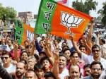 कांग्रेस पर भाजपा की तगड़ी जीत, निकाय चुनाव में हासिल कीं बंपर सीटें