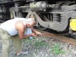 पटरी पर बैठी 11 गायों को ट्रेन ने काट दिया, 8 की दर्दनाक मौत