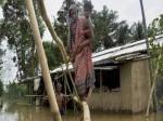 PICs: बाढ़ में बर्बाद हुई अरबों की फसल तो सहायता राशि कैसे हुई भरपाई!