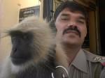PICs: दरोगा को थाने में ढूंढता है बंदर तो घर पर इंतजार करता है कुत्ता