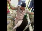 CM योगी के सिपाही ने गाय को बचाने के लिये लगा दी जान की बाजी