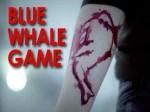 ब्लू व्हेल गेम का अंतिम टास्क पूरा करने के चक्कर में फांसी पर झूला किशोर