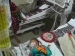 गोरखपुर बीआरडी मेडिकल कॉलेज में 3 दिनों में 44 बच्चों की मौत