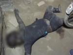 VIDEO: छह दिन से लापता थी मासूम बच्ची, पिता ने पड़ोसी के घर में झांक कर देखा तो रह गया सन्न