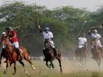 दिल्ली की जहरीली हवा का असर अब पोलो खेल के घोड़ों पर भी, बदलने पड़े नियम