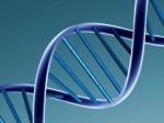 तीसरे बच्चे की मां है या नहीं, ये पता लगाने के लिए महिला सरपंच को कराना होगा DNA टेस्ट