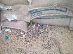 ब्लैक करने के लिए गोदाम में रोक लिया किसानों को दिया जाने वाला बीज, सड़ गया