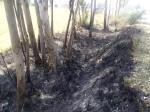 रायबरेली: पैन कार्ड बनवाने घर से निकले शख्स की हत्या के बाद शव को जलाया