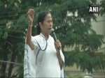 ममता बनर्जी का ऐलान, 15 अगस्त से शुरू होगा 'बीजेपी हटाओ, देश बचाओ' अभियान