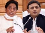 Exit Poll 2019: यूपी में सपा-बसपा महागठबंधन की निकली हवा, जानिए BJP की सीटें