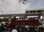 दिल्ली मेट्रो रुकी तो हुआ बुरा हाल, कहीं ट्रैक पर चलकर तो कहीं ट्रकों में ऑफिस पहुंचे लोग